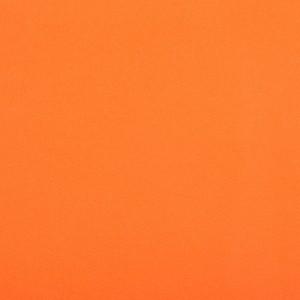 EDGEWATER CARPET 1M orange
