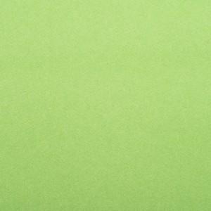 EDGEWATER CARPET 1M grass green