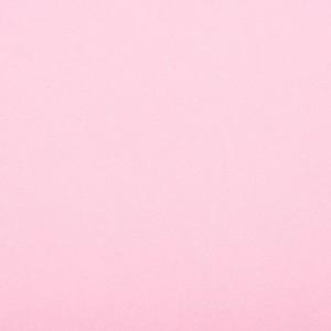 EDGEWATER CARPET 1M pink