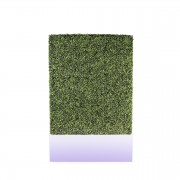 Prosecco Illuminated Boxwood Front_illuminated
